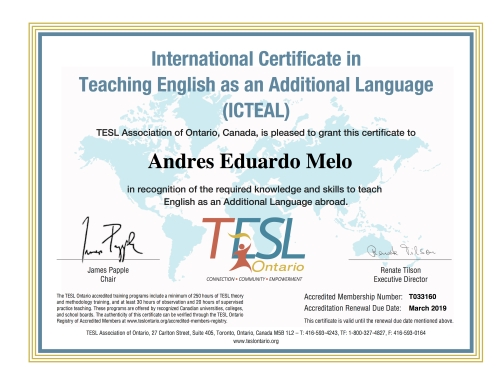 T033160-instructor-international